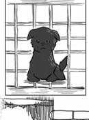 爱玩犬漫画