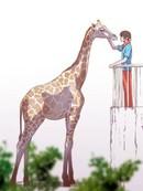 动物园物语 第16话